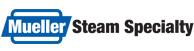 Mueller Steam